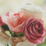Róże w wazonie - jak przedłużyć ich trwałość?