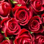 Romantyczne kompozycje dla zakochanych