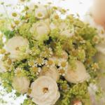 Margaretki w towarzystwie innych kwiatów