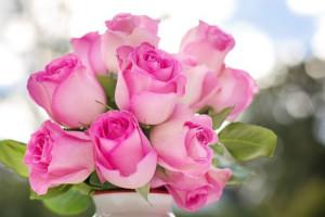 Róże imieninowe