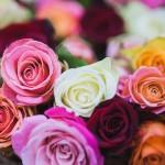 Najpiękniejsze kompozycje kwiatowe na Dzień Nauczyciela