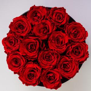 róże małe