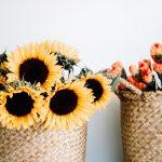 Słoneczniki w radosnych kompozycjach