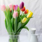 Kwiaty cięte - co zrobić, by dłużej wyglądały pięknie?