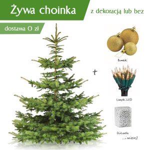Piękna choinka - jakie wybrać drzewko?