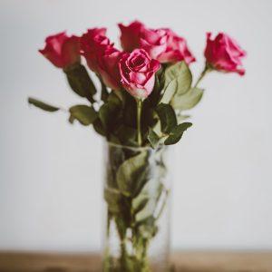 Kwiaty cięte - jak ożywić pomieszczenie za pomocą kwiatów