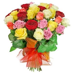 kolorowe róze