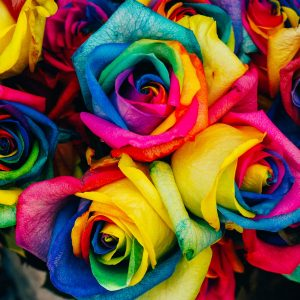 Barwienie kwiatów - zrób to w domu!