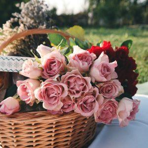 Kolory róż - co symbolizują?